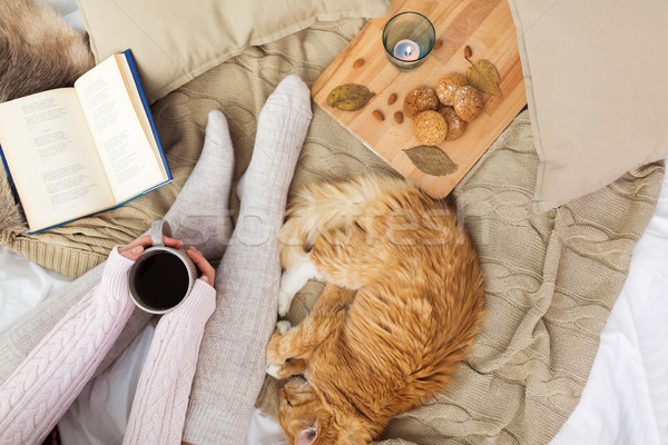 woman with coffee and red cat sleeping in bed Stock photo © dolgachov