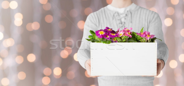 Közelkép férfi tart nagy edény virágok Stock fotó © dolgachov