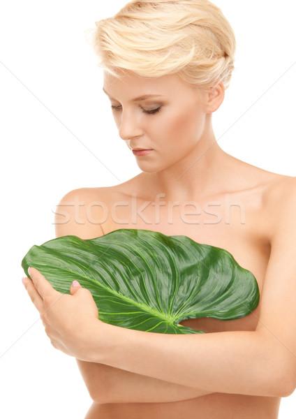 Mujer hoja verde Foto blanco feliz salud Foto stock © dolgachov