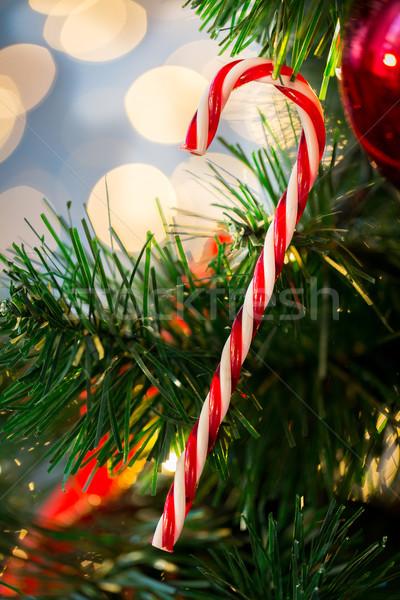Zuckerrohr candy Weihnachtsbaum Feiertage Stock foto © dolgachov