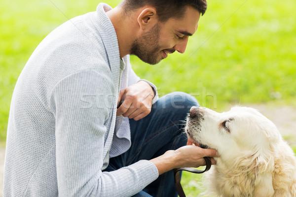 Adam Labrador köpek açık havada aile Stok fotoğraf © dolgachov