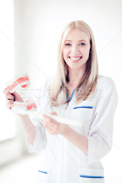 doctor with toothbrush and jaws in hospital Stock photo © dolgachov