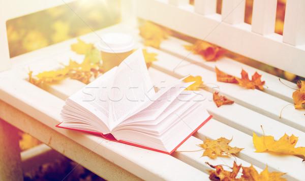 Libro abierto taza de café banco otono parque temporada Foto stock © dolgachov
