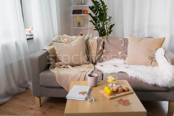 sofa with cushions at cozy home living room Stock photo © dolgachov