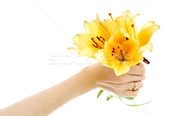 female hand holding yellow madonna lily bouquet Stock photo © dolgachov