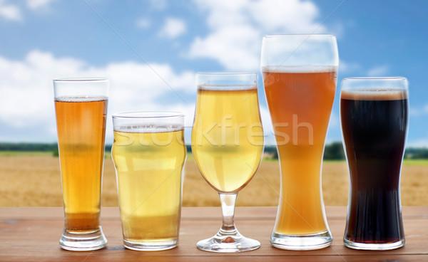 различный пива очки зерновых области пивоваренный завод Сток-фото © dolgachov