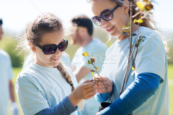 Voluntários família árvore plântula parque voluntariado Foto stock © dolgachov