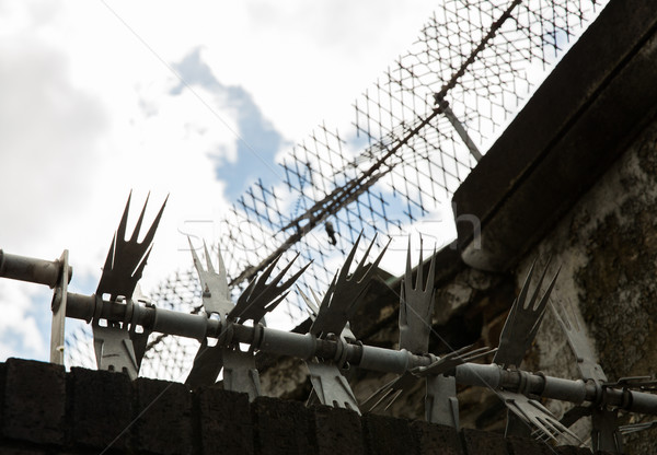 close up of fence with barbed wire and mesh Stock photo © dolgachov