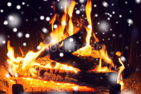 close up of firewood burning in fireplace and snow Stock photo © dolgachov