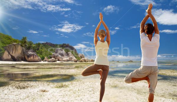 Para jogi drzewo stanowią odkryty fitness Zdjęcia stock © dolgachov