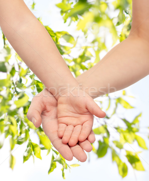 close up of woman and little child hands together Stock photo © dolgachov