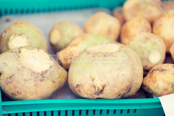 close up of swede or turnip at street market Stock photo © dolgachov
