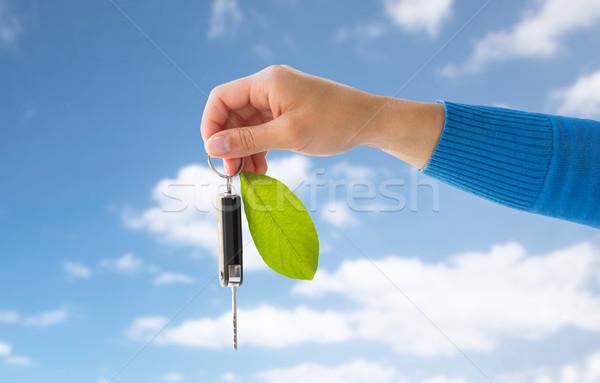 手 車のキー 緑色の葉 保全 ストックフォト © dolgachov