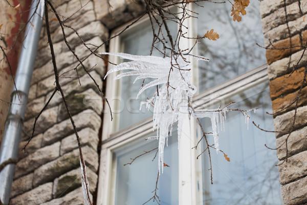 Finestra stagione inverno città ghiaccio Foto d'archivio © dolgachov