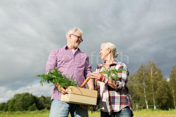 Stockfoto: Vak · wortelen · boerderij · tuinieren