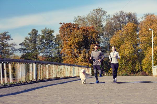 Photo stock: Heureux · couple · chien · courir · extérieur · fitness