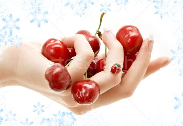 Stock photo: hand full of red cherries