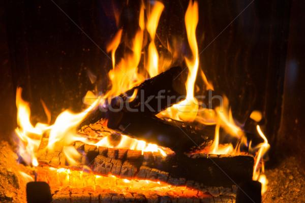 close up of firewood burning in fireplace Stock photo © dolgachov
