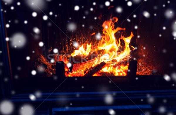 Drewno opałowe palenie ognisko śniegu zimą Zdjęcia stock © dolgachov