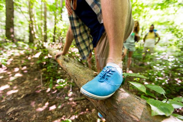 Człowiek wspinaczki lesie przygoda Zdjęcia stock © dolgachov