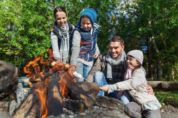 Stock fotó: Boldog · család · mályvacukor · tábortűz · kempingezés · utazás · turizmus