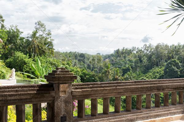 Kilátás erkély trópusi erdő hotel utazás Stock fotó © dolgachov