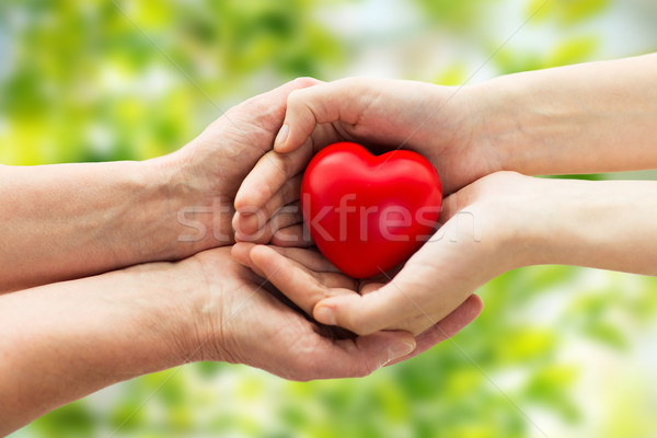 senior and young woman hands holding red heart Stock photo © dolgachov