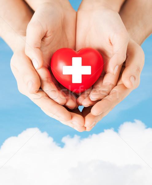 Masculino feminino mãos vermelho coração família Foto stock © dolgachov