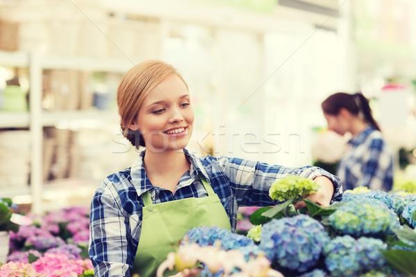 Gelukkig vrouw zorg bloemen broeikas Stockfoto © dolgachov