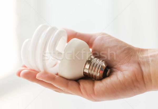 Stockfoto: Hand · energie · besparing · gloeilamp