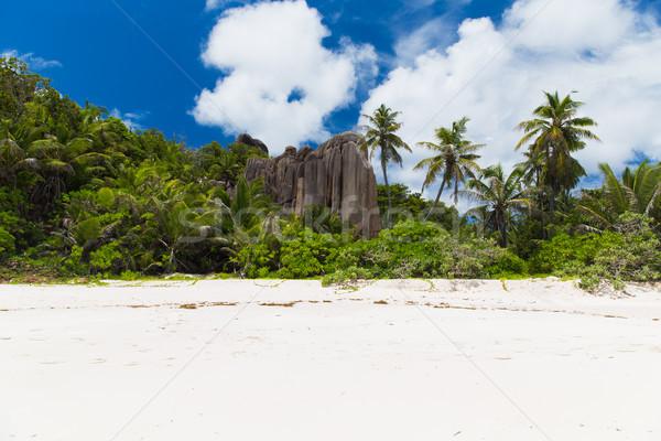 Тропический остров пляж Сейшельские острова путешествия пейзаж природы Сток-фото © dolgachov