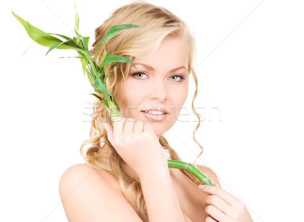 Mujer bambú Foto blanco salud verde Foto stock © dolgachov