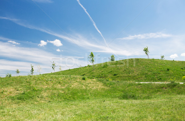 summer green field and hills over blue sky  Stock photo © dolgachov