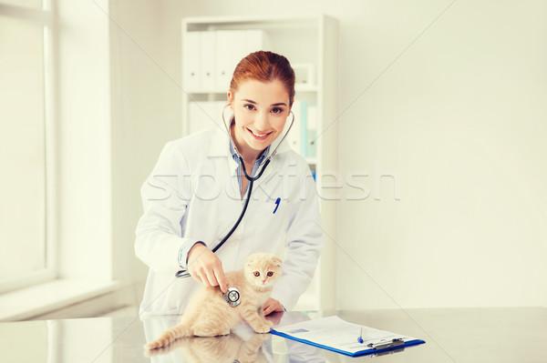 Сток-фото: счастливым · ветеринар · котенка · ветеринар · клинике · медицина