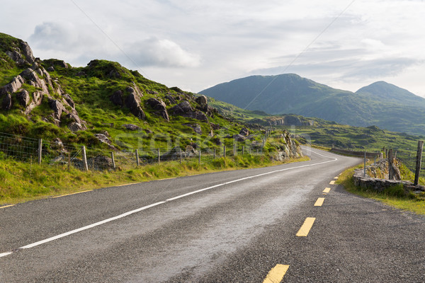 asphalt road and hills at connemara in ireland Stock photo © dolgachov