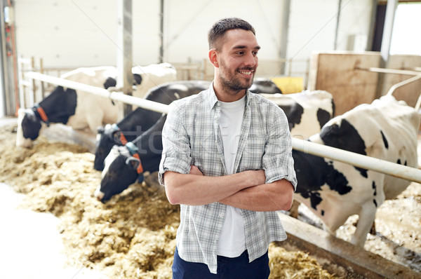 Człowiek rolnik krów mleczarnia gospodarstwa rolnictwa Zdjęcia stock © dolgachov