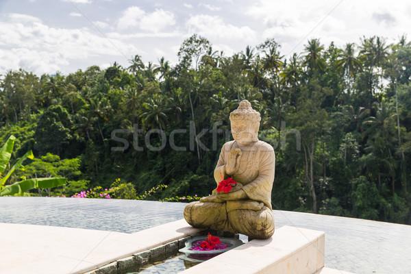 Infini bord piscine buddha statue Voyage Photo stock © dolgachov
