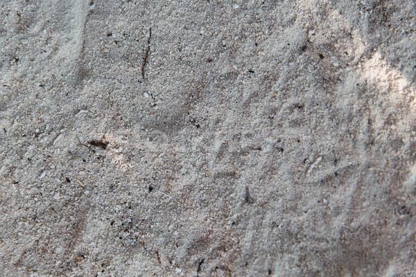 close up of sand surface Stock photo © dolgachov