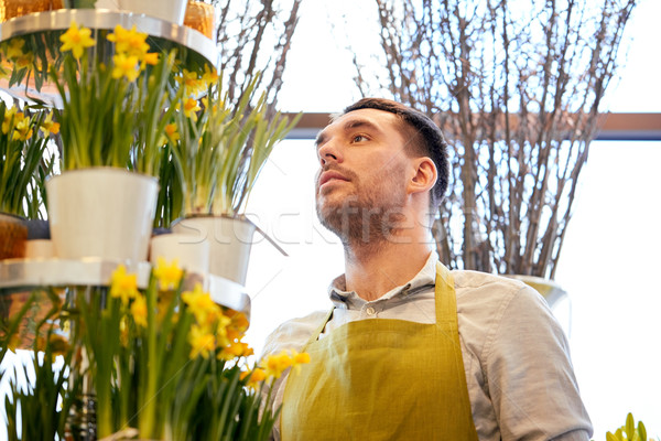 florist man with narcissus flowers at flower shop Stock photo © dolgachov