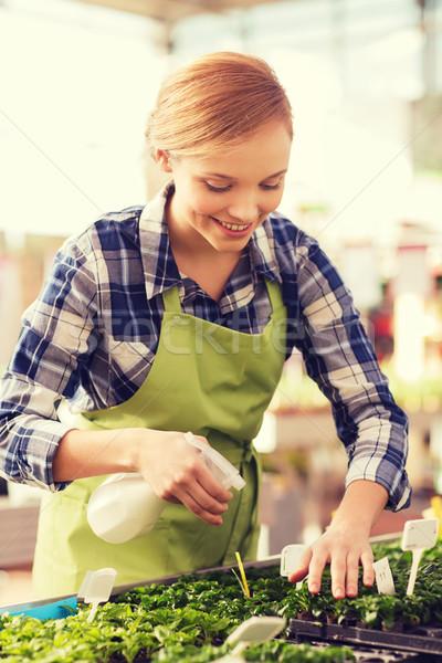 Femme semis effet de serre personnes jardinage profession Photo stock © dolgachov