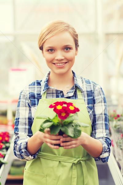 Feliz mujer flores invernadero personas Foto stock © dolgachov
