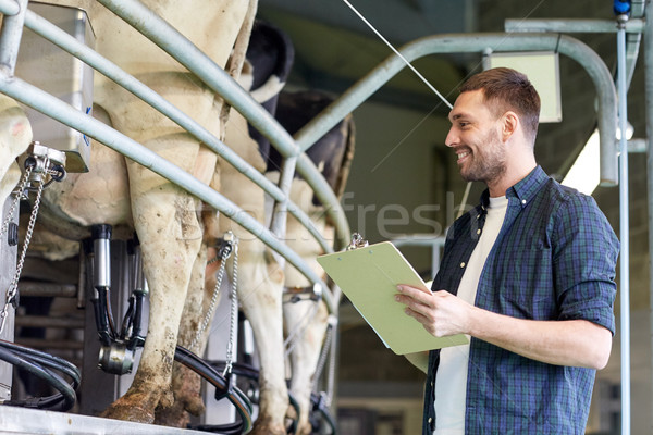 man with clipboard and milking cows on dairy farm Stock photo © dolgachov