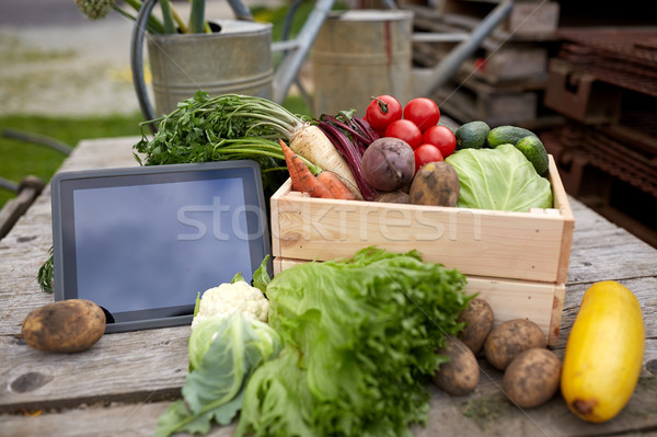 close up of vegetables with tablet pc on farm Stock photo © dolgachov