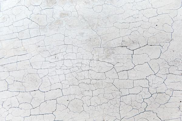 треснувший каменной стеной поверхность текстуры каменные Сток-фото © dolgachov