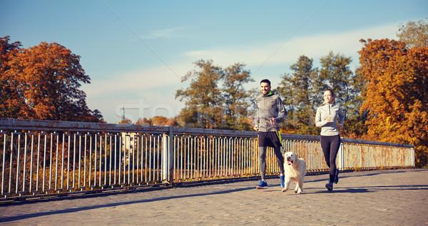 happy couple with dog running outdoors Stock photo © dolgachov