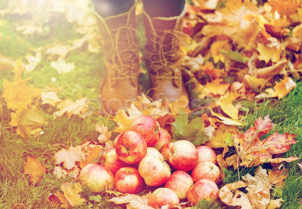 Mujer pies botas manzanas hojas de otoño Foto stock © dolgachov