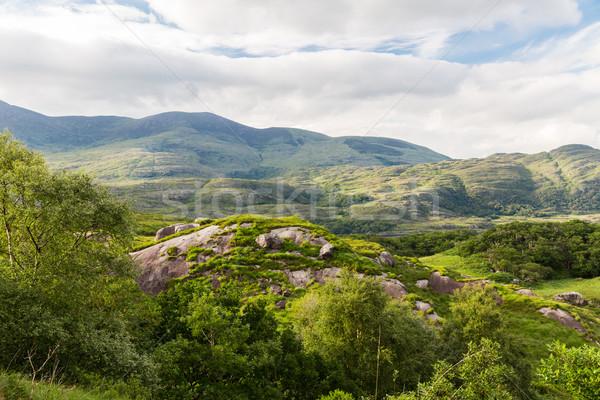 view to Killarney National Park hills in ireland Stock photo © dolgachov