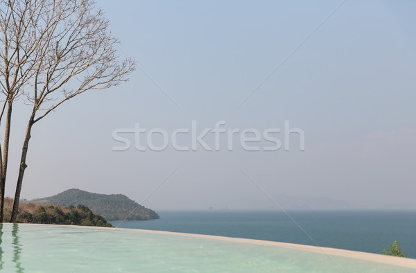 beautiful view from infinity edge pool to sea Stock photo © dolgachov