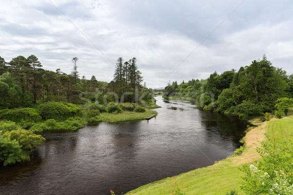 Kilátás folyó Írország völgy természet tájkép Stock fotó © dolgachov