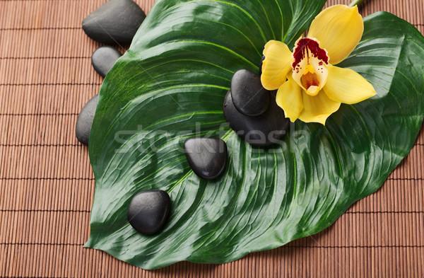 Stockfoto: Massage · stenen · bloemen · spa · schoonheid · orchidee